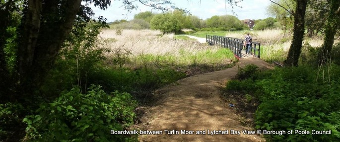 4. Boardwalk between Turlin Moor and Lytchett Bay View BoP