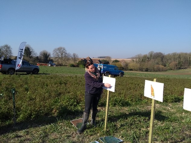 Working with farmers cover crop trial, Poole Harbour catchment